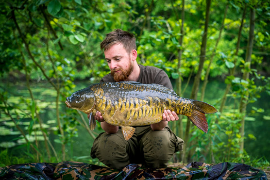 Carpinsula goes lead <b>Free</b>! | The Carp Specialist