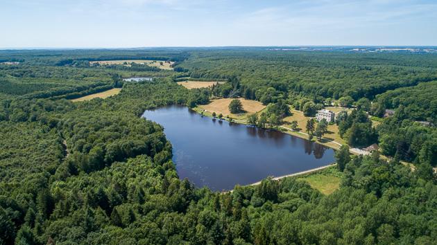 Estate Lake | The Carp Specialist